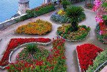 jardines y diseño