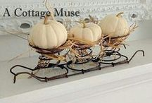 Pumpkins and decor / Zucche decorative