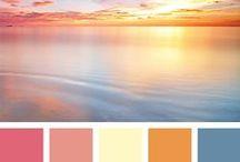 Color Palettes / Color Palettes