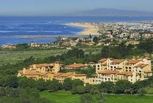 Custom Wine Cellars California Builders - Newport Beach Coast Library Project / Coastal Custom Wine Cellars 26222 Paseo Toscana San Juan Capistrano, CA 92675 California Office: +1 (949) 355-4376