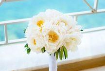 REAL CORFU WEDDINGS / Weddings in Corfu
