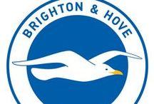 Brighton & Hove Albion / Brighton & Hove Albion