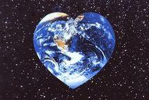 Környezetvédelem/Eco-Friendly