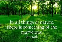 Thoughts on Nature