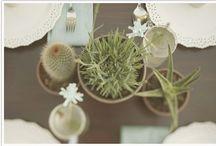 wedding decor inspiration / by Jessica Hawley-Gamer