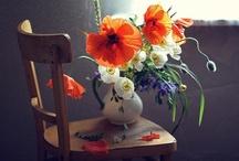 flowers/Gardens