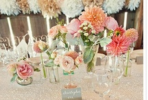ROMANTIC Rustic COUNTRY Wedding ~*~ / M & J's NS Wedding Aug 31 2013/ My Dress - Ivory/ MOH Dress - Pale Pink/ Bridesmaid Dresses - Neutral Colors: Beige, Cream, Tans, Taupe etc (All dresses mismatched)/ Flowers: Whites, Creams, Pale & Bright Pink, Peach  with hint of Yellow/Orange - Dahlias. Guys Bouts will be Succulents/ Decor Ideas: Birch Trees, Birds Nests, White Lights, Burlap, Candles, Deer Antlers & Skulls, Hay Bail Seating Outdoors, Tree Cookies, Birch Arbour, Potted Succulents & Dahlias in Vases, Sequin Linen  / by Melissa Lindsay