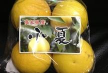 Fruit  果物 / by Kazutaka Obika