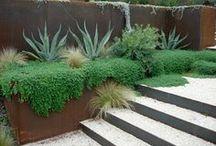 Design | Terraced Courtyard / by Elizabeth