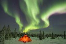 Aurora Borealis / by Dianne Snow