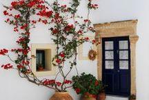 Design | Greek / by Elizabeth