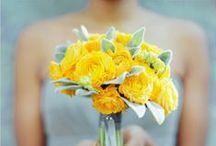 [Wedding] bouquets