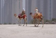 DUBAI ET LES EMIRATS ARABES UNIS