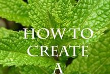Herbs That Heal / Natural herbs, remedies, herbal healing, herbs that heal, holistic living.