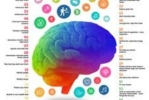 Brain Health / Tips and tricks for keeping your brain healthy and your mind in tip-top shape.