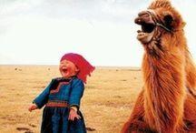 Laughter...Good Medicine
