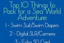Texas Family Travel - SeaWorld Adventures and Navigation Tips/Guide / A board dedicated to nothing but Sea World San Antonio (Sea World Texas)! Great options for babies, toddlers, preschoolers, teenagers, and multigenerational families!