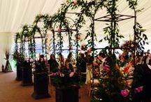 Dunglass Marquee Styling