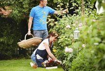 Plants & Gardening Tips