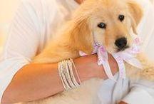 Bracelets / Stack them up or wear them separately!