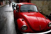 WV Bug