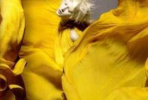 Y E L L O W / Bright, neon, pale, sunflower, canary, mustard, citrus... Such a sunny joyful colour! My colour crush.