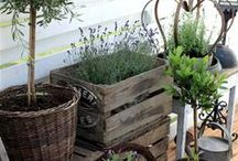 "garden & farm inspirations / mix & match gardening tips and ideas, dreams for the ""farm"""