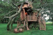 Tree houses / How kool would it be to live in a tree!