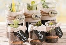Bit of green / Creative ideas for gardens / vegies / herbs in small spaces