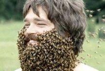 All things weird. / All things weird... and beard.