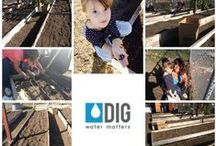 DIG in the Community  / We at DIG are as passionate about eco-friendly drip irrigation technology as we are about our community.  Join us in sharing our joy for community conservation on this board!