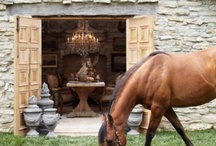 Fab French Farmhouse / by French Charmed