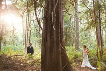 Weddings at IslandWood / There is a world of possibility in every moment. Destination weddings at IslandWood reflect the things we care most about: family and community, our world, and the love we share for it and each other. We offer exclusive use of the 255-acre property beginning Friday at 6pm through Sunday at 11am and devote our attention only to you.