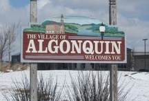 Everything Algonquin
