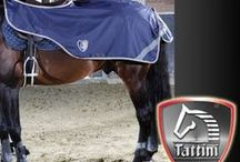 Tattini Horse Wear / Tattini is available exclusively from Selwood Equine The UK's only Authorised reseller of the stylish and practical Italian equestrian and fashion clothing line  Designing, Manufacturing Equestrian Clothing, Footwear and Horsewear since 1860. TATTINI is an established name in high quality equestrian products