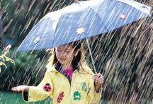 *Rainy Region*