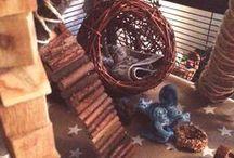 Chinchilla Cage Accessories