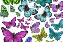 Vlinders DIY