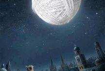 Only knitting / by Nereida Gilbert