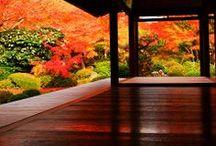 Japanese scenery / 和風 日本 風景