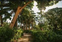 Son Julia Gardens