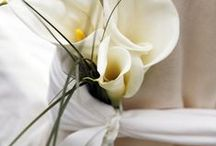 Wedding Decorations / Ideas for your perfect wedding, from Son Julia Hotel Mallorca. Simple, stylish tips for your perfect day!