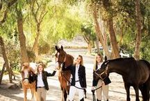 All the Pretty Horses / Horse-inspired home decor and accessories.