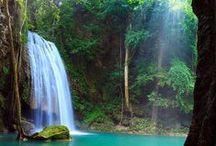 Amazing Thailand / by Angsana Laguna Phuket