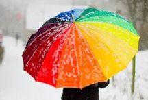 umbrella. deštník. paraple