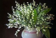 Lily of the valley / .
