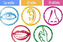 Español_vocabulario