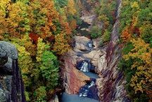 Day Tripper / Great  day trips from Blue Ridge to the surrounding communities and natural treasures of North Georgia