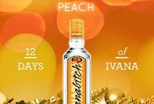 12 Days of Ivana / Need a good gift for the holidays? Pin these as helpful hints!