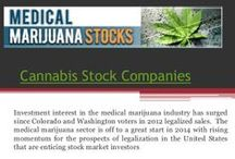 Marijuana Stock Picks /  Medical Marijuana Stock Picks are smoking now that an increasing number of states are voting for legal marijuana or the legalization of cannabis — but even the best marijuana stocks also come with plenty of risks. The company comprises a diversified portfolio of products, services, technology and businesses solely focused on the production of high concentrate CBD (cannabidiol) products.